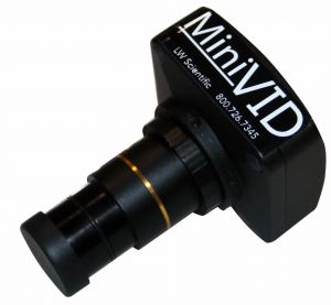 LWS Minivid USB Digital Camera Microscope Camera